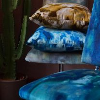cushion cameo5