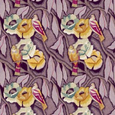 perroquet-violet